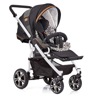 Gesslein Stroller F4 Air+ - * The Gesslein F4 stroller is extremely versatile and can be optionally equipped with a hand brake