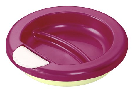 Rotho Insulated plate raspberry 2014 - large image