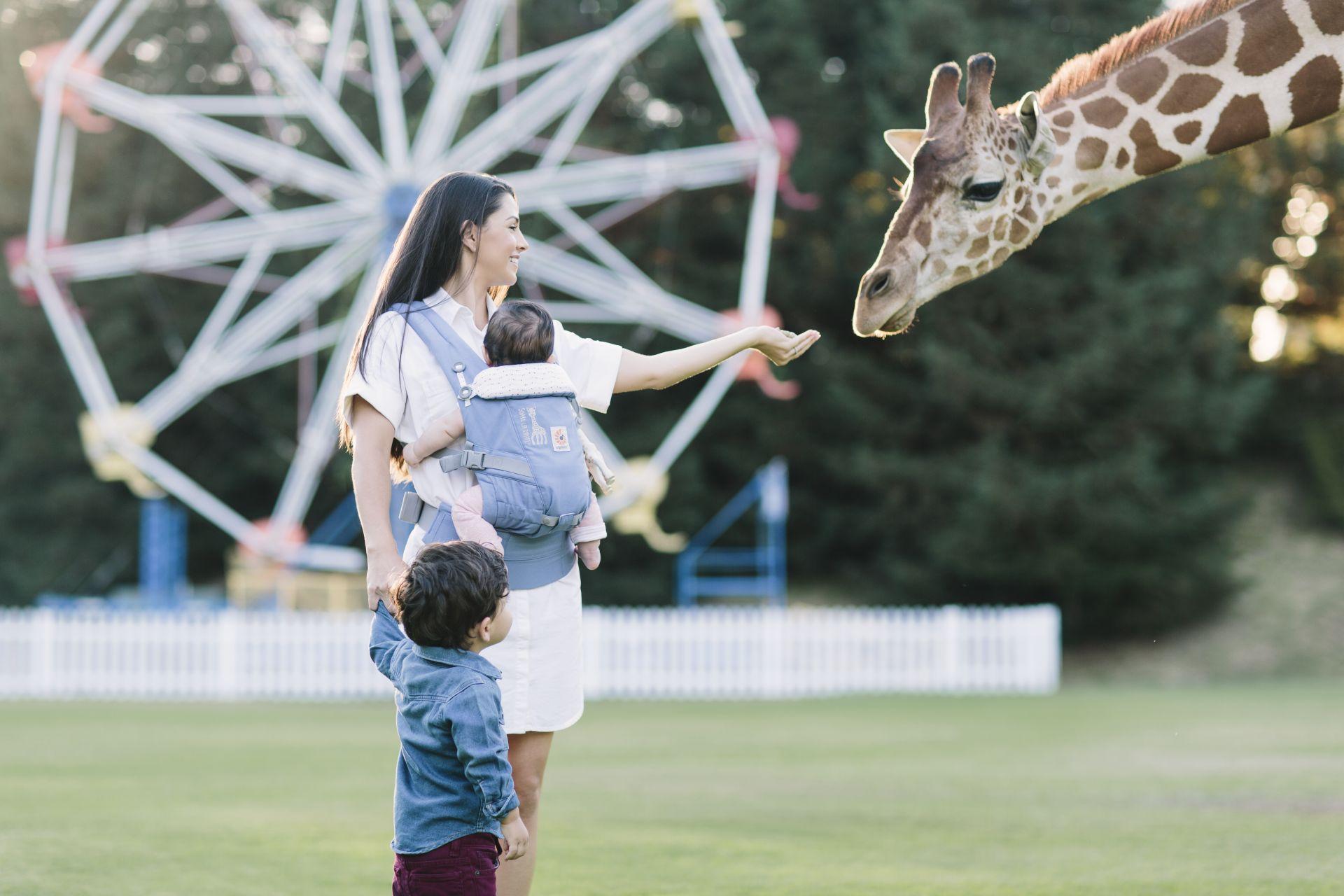 ergobaby baby carrier adapt sophie la girafe festival buy at kidsroom on tour. Black Bedroom Furniture Sets. Home Design Ideas